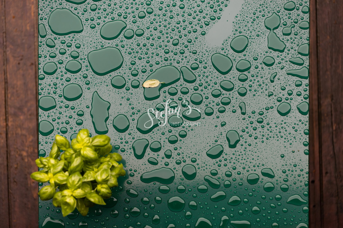 """""""Green table with rain puddles"""" stock image"""