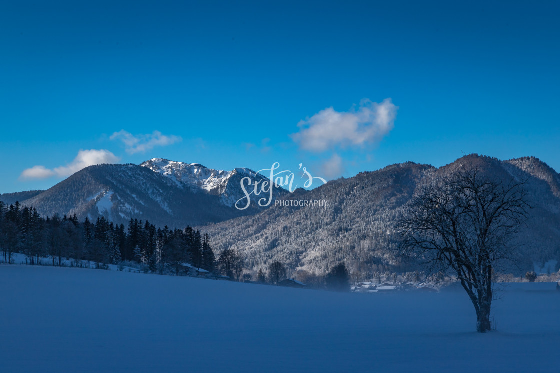 """""""Winter landscape with fog"""" stock image"""