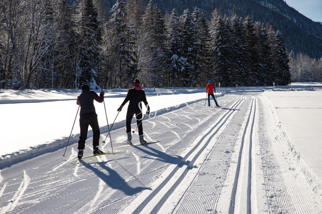"""Cross-country skiing skating"" stock image"