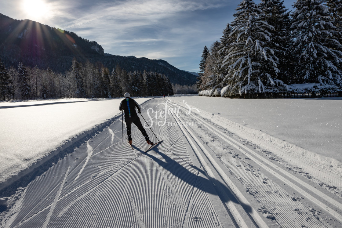 """""""Cross-country ski trail in the backlight"""" stock image"""