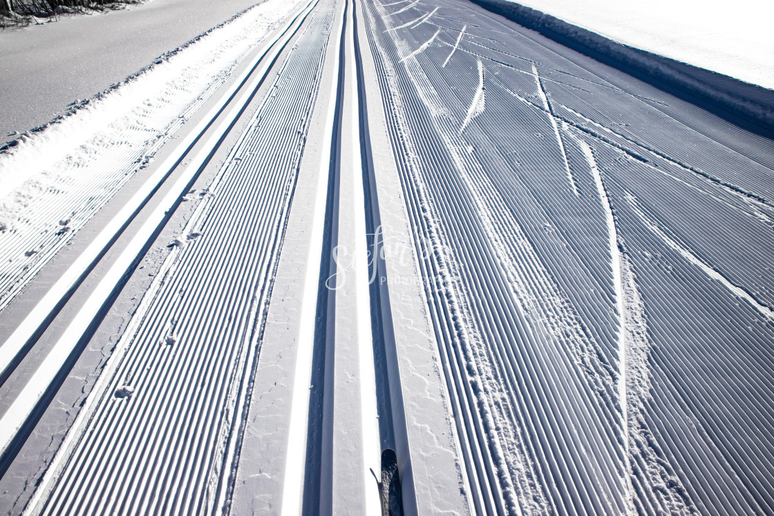 """""""Cross-country skiing track"""" stock image"""
