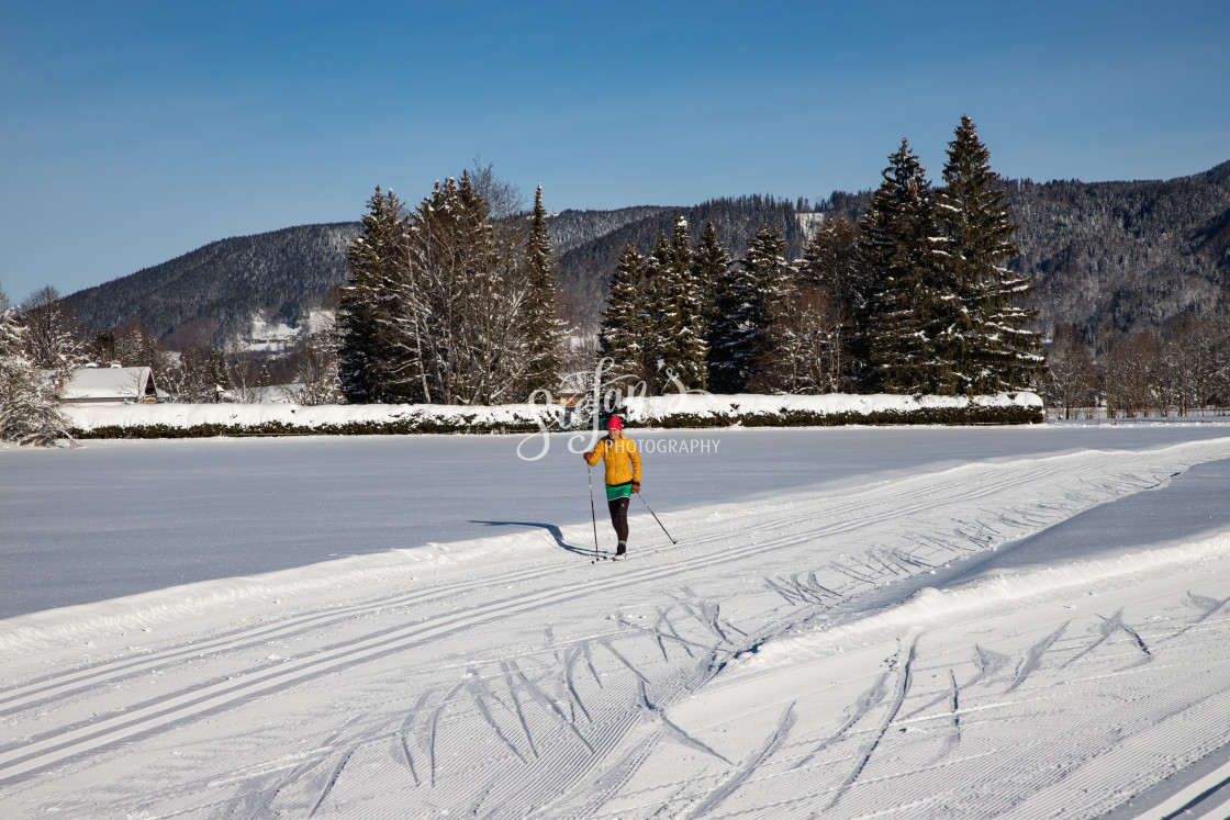 """""""Classic cross-country skiing"""" stock image"""