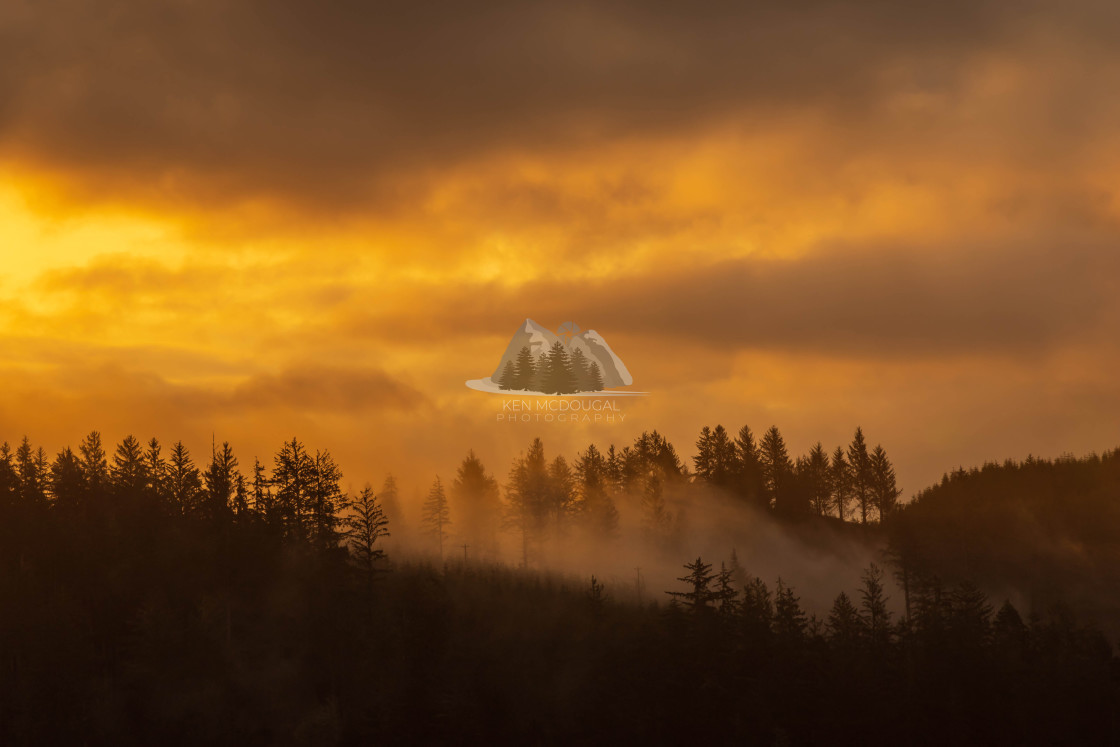 """Sunrise and Fog"" stock image"