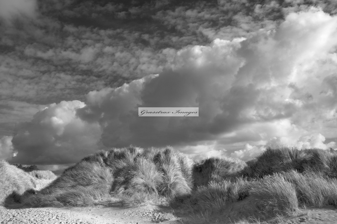"""Sand dunes at Newborough Beach on Anglesey"" stock image"