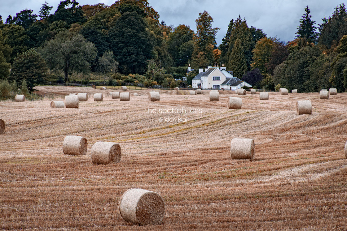 """Autumn Farming"" stock image"