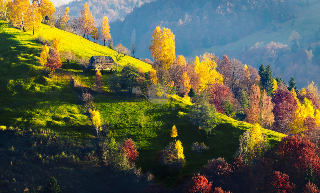 """Autumn colors"" stock image"