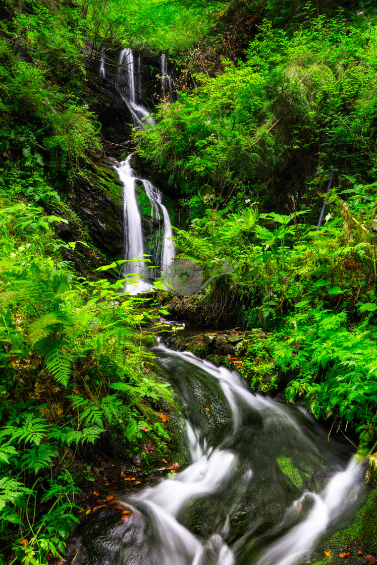 """Piscul Negru waterfall"" stock image"