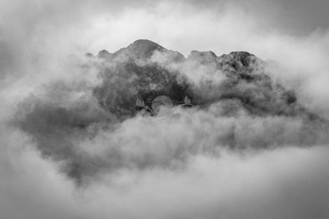 """Through the fog"" stock image"
