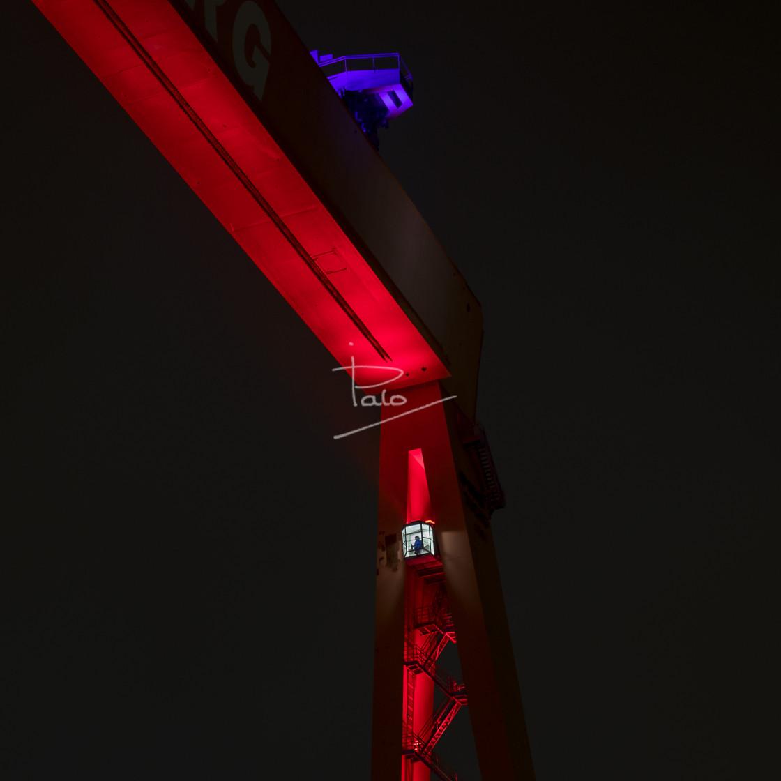 """""""The Crane"""" stock image"""
