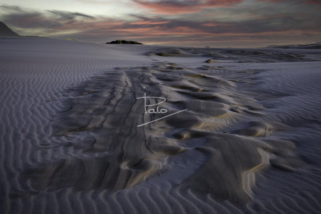 """""""In the desert"""" stock image"""