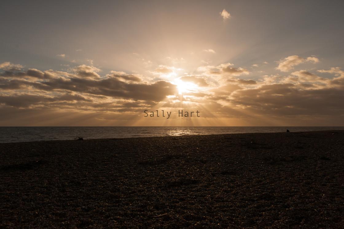 """Dungeness Beach"" stock image"