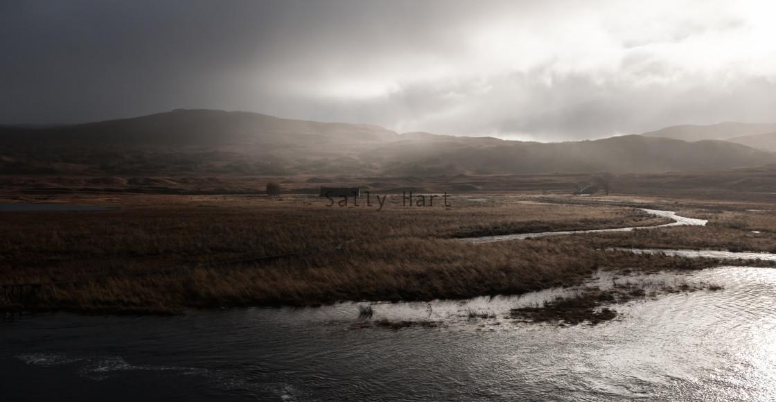 """Loch Laggan, Scotland"" stock image"
