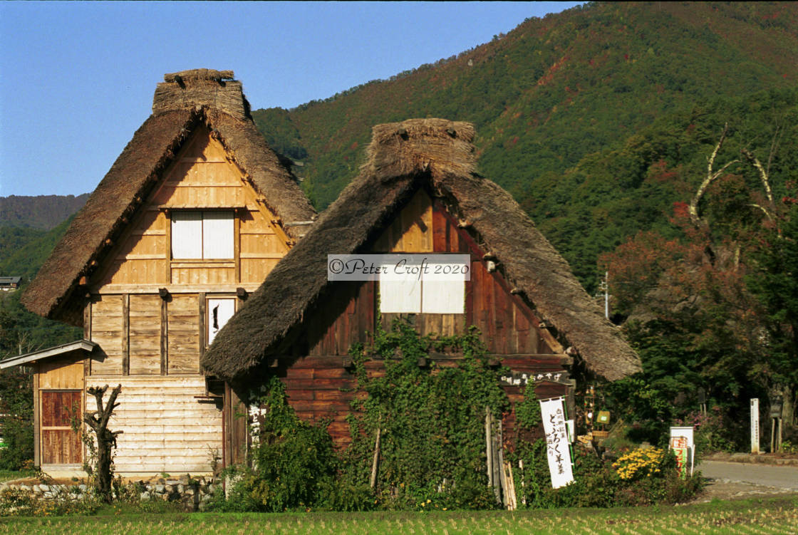 """""""Thatched houses in Ogimachi, Japan."""" stock image"""