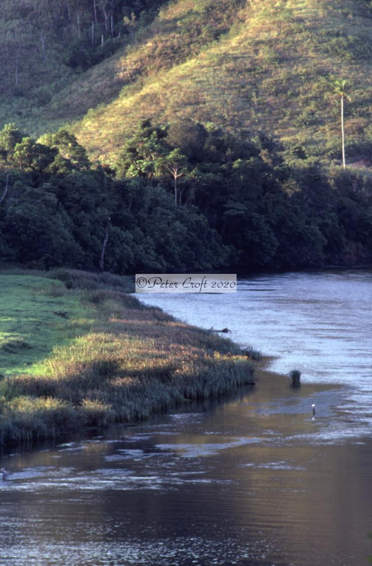 """Daintree River, Queensland, Australia."" stock image"