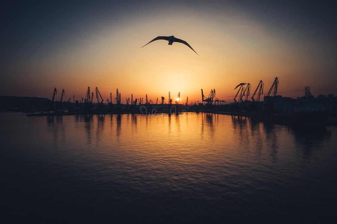 """Aerial view of Varna sea port and industrial cranes, Bulgaria."" stock image"