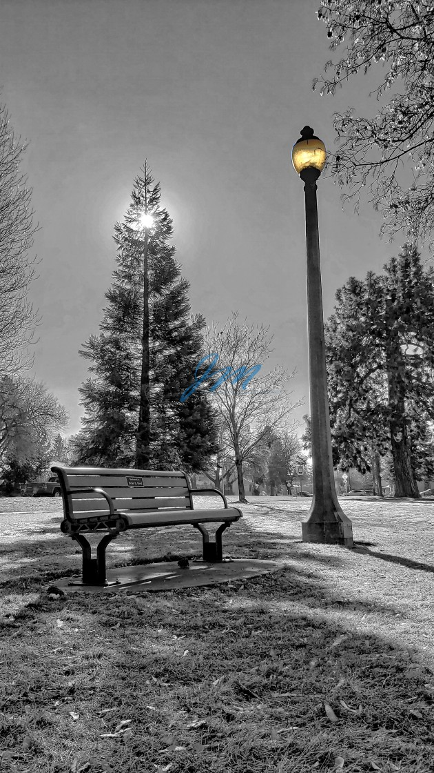 """""""Park Bench"""" stock image"""