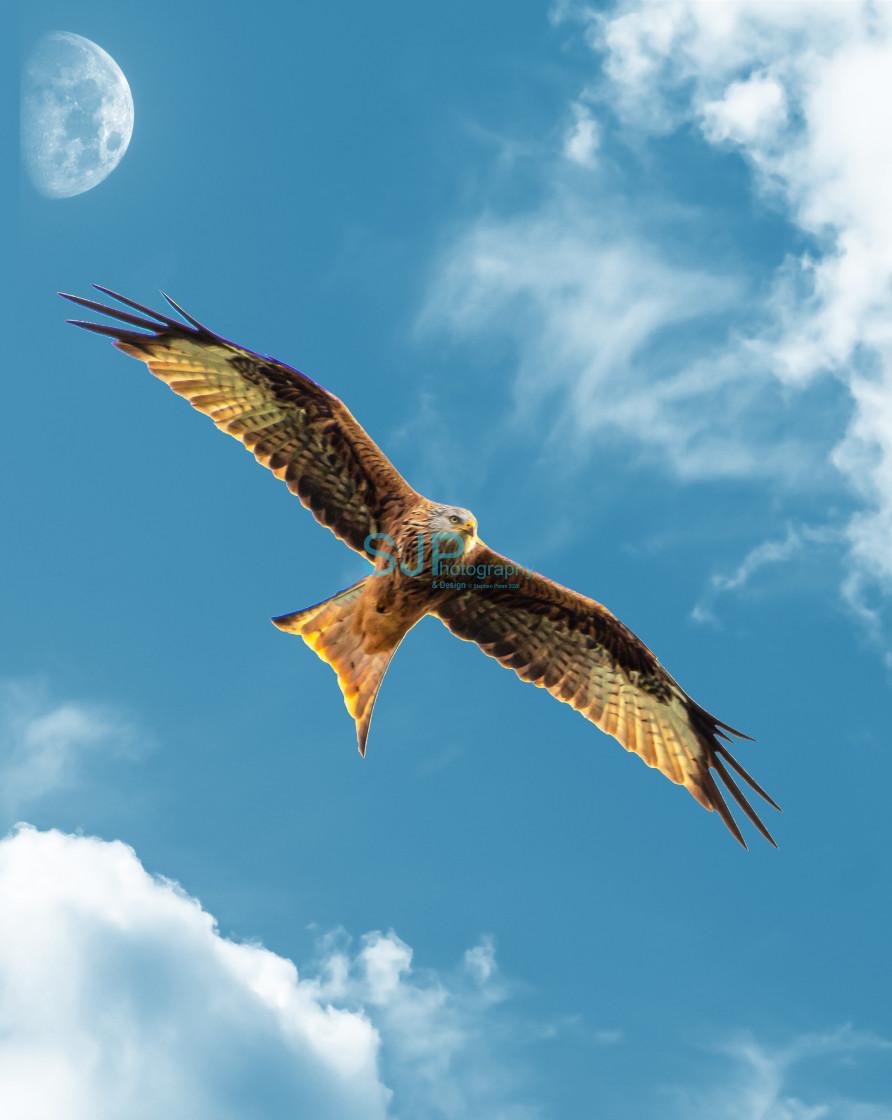 """Red Kite Blue Sky Moon"" stock image"