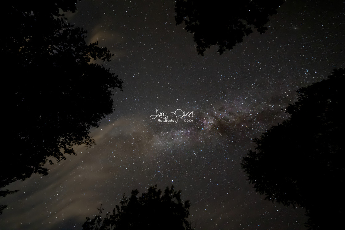 """""""Milky Way, Trees, and Clouds"""" stock image"""