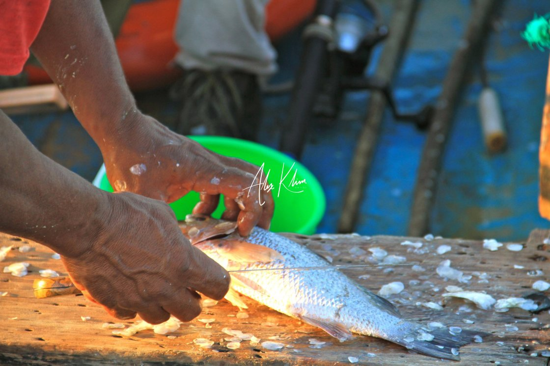 """Cuban Fisherman"" stock image"