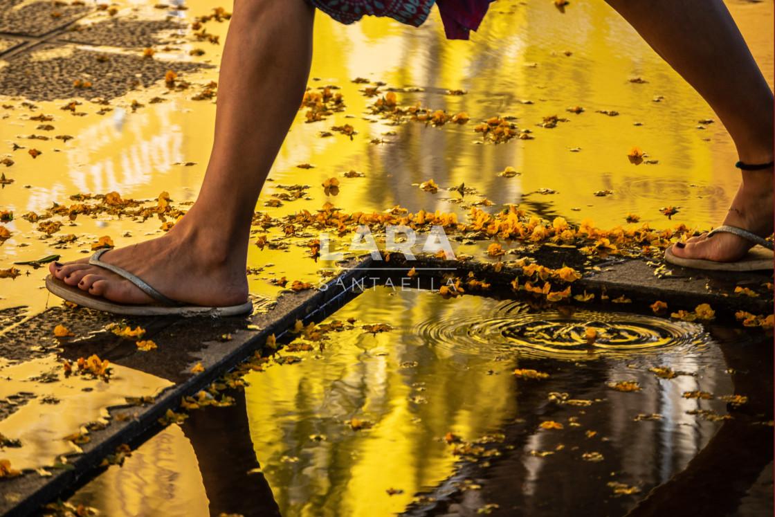 """Walking on gold"" stock image"