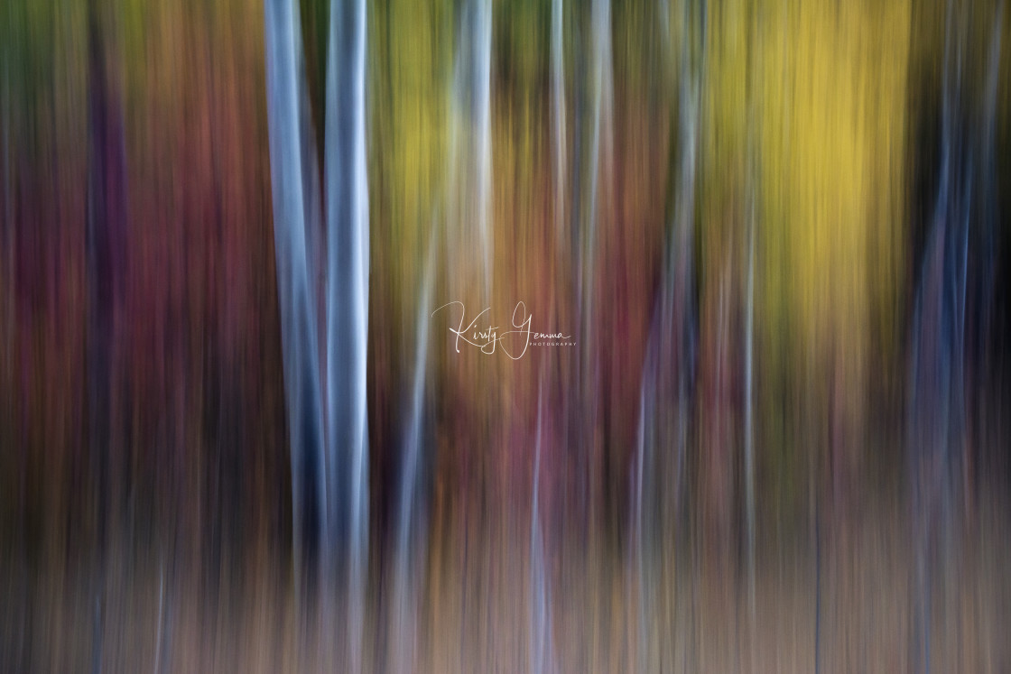 """Abstract Autumn Pt 3"" stock image"