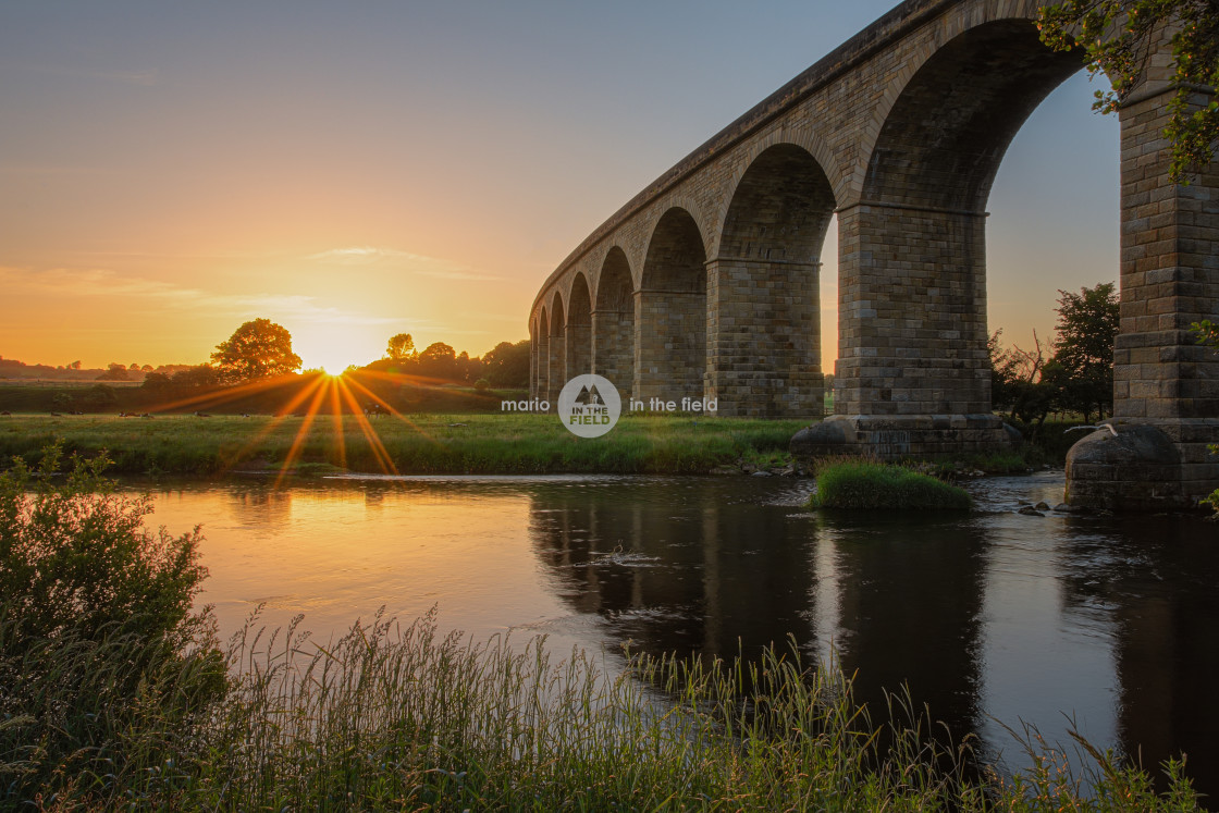 """Arthington Viaduct at sunrise"" stock image"
