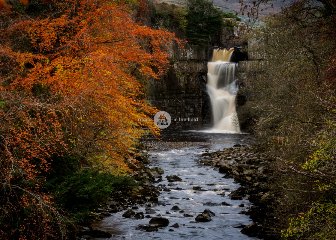 """High Force"" stock image"