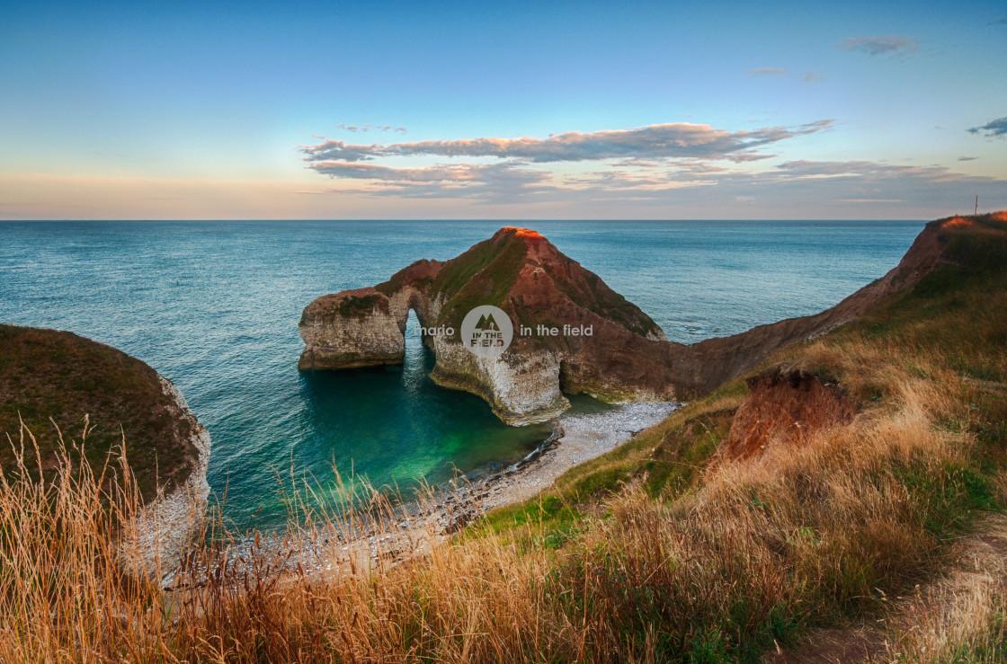 """""""Dinosaur Cliff in Flamborough Head"""" stock image"""