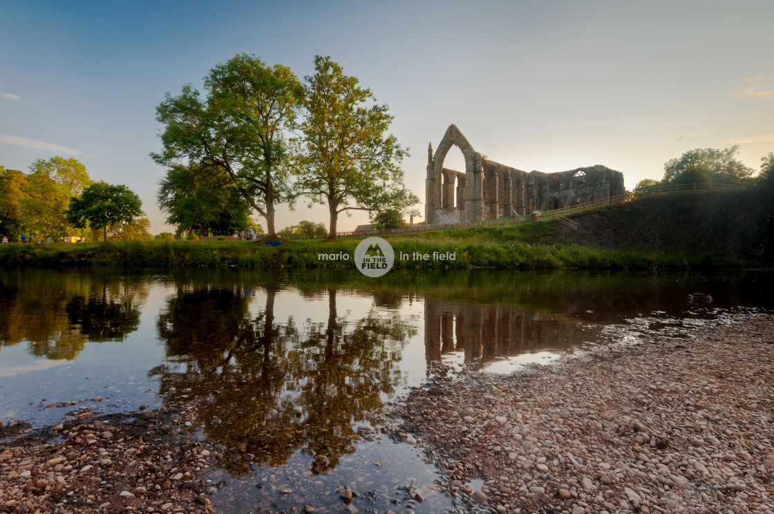 """""""Bolton Priory at sunset"""" stock image"""
