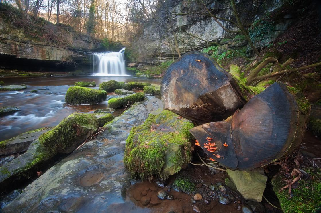 """West Burton waterfall"" stock image"