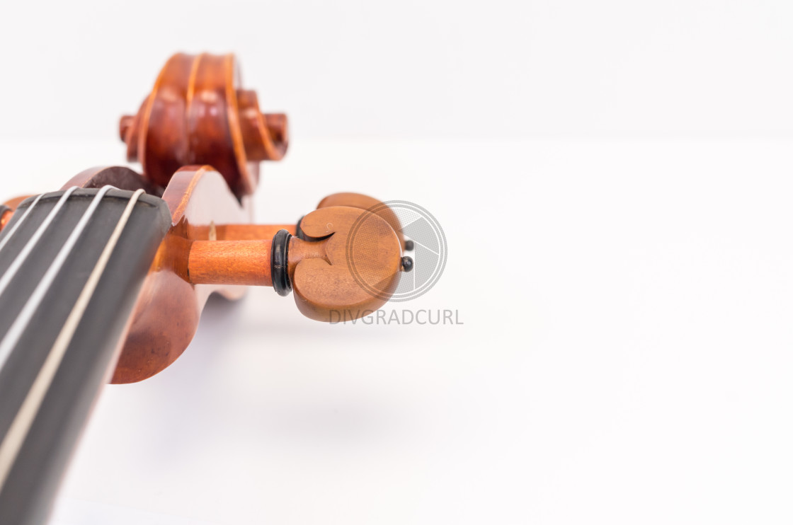 """""""violin scroll with tuning pegs close up"""" stock image"""