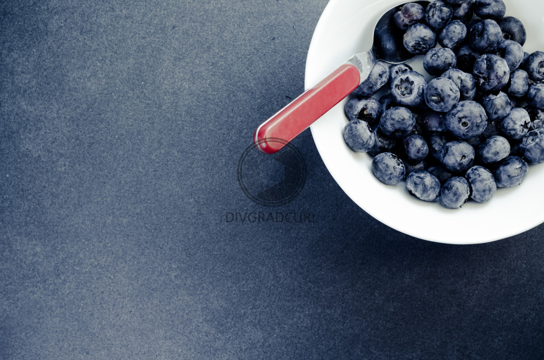 """blueberries in a white porcelain bowl"" stock image"