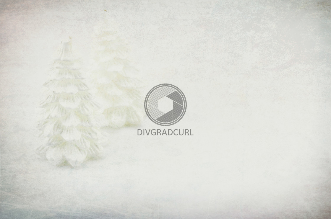 """wax decorative xmas fir backdrop"" stock image"