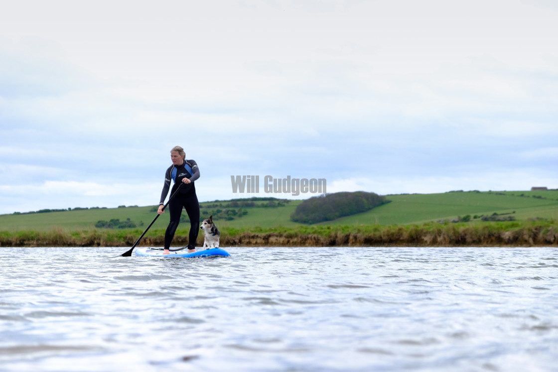 """""""Stand up paddle boarding with a dog"""" stock image"""