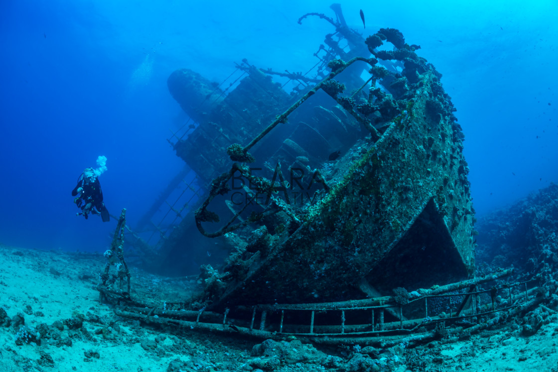 """Diver exploring Red Sea wreck"" stock image"
