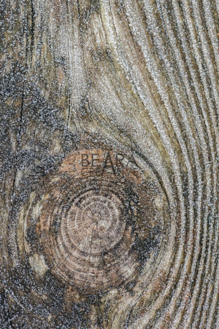 """""""Wood grain frost pattern"""" stock image"""