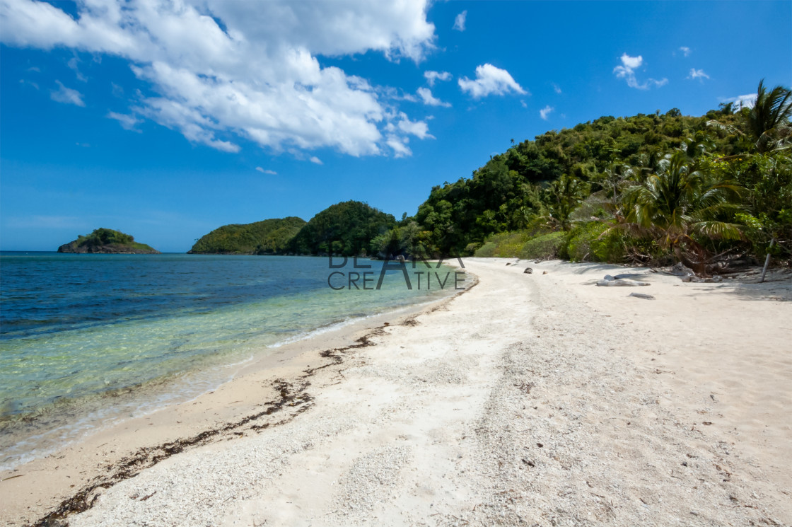 """Danjugan Island tropical beach"" stock image"