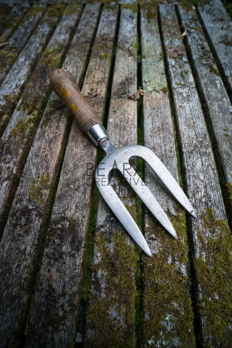 """Garden hand fork rustic table"" stock image"
