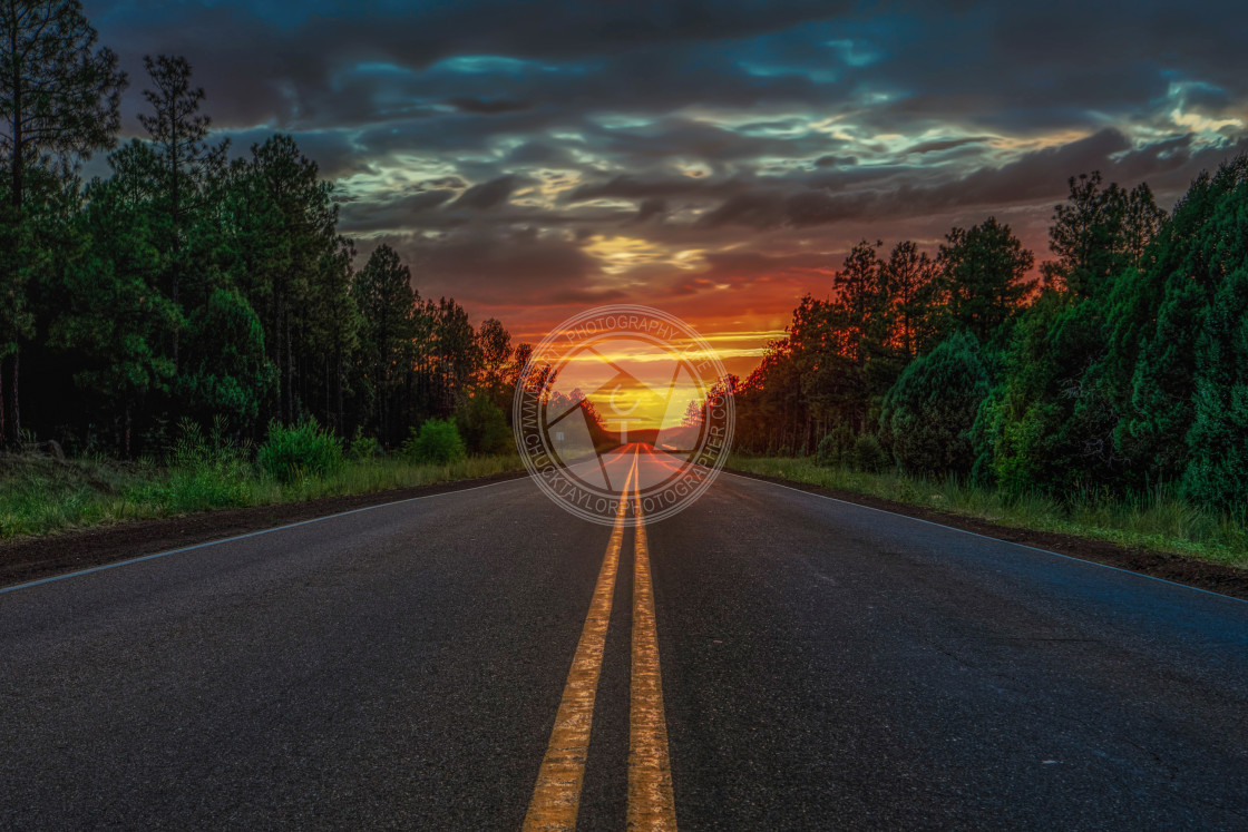 """""""road trip-national forest-sunrise-infinite"""" stock image"""