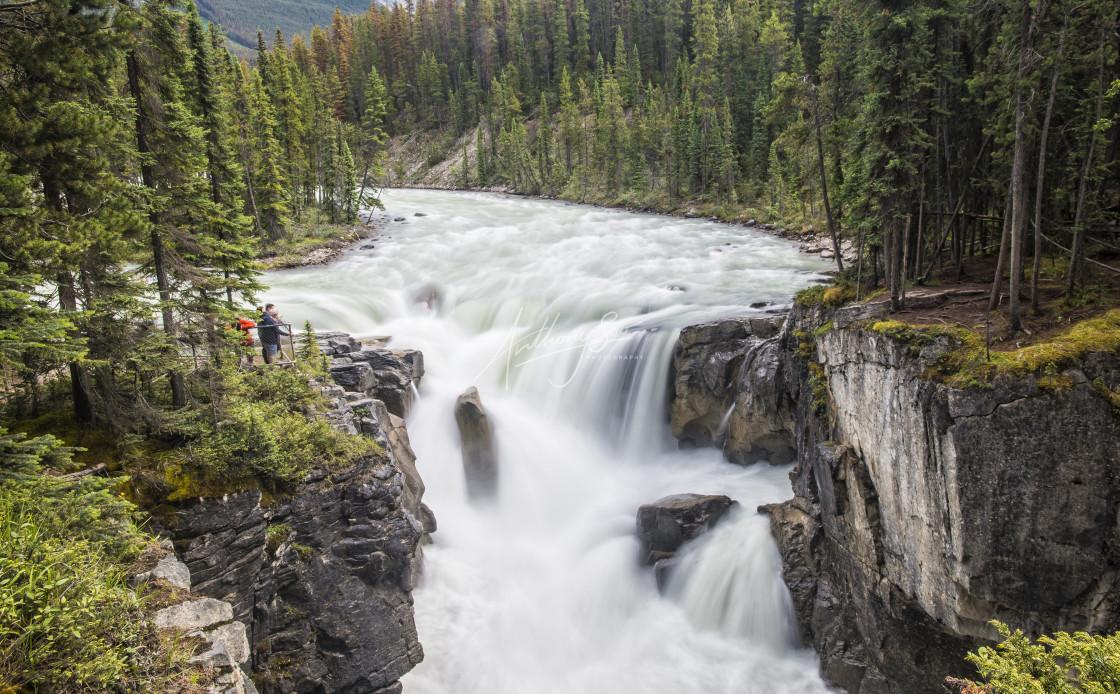 """""""Sunwapta Falls, Jasper"""" stock image"""