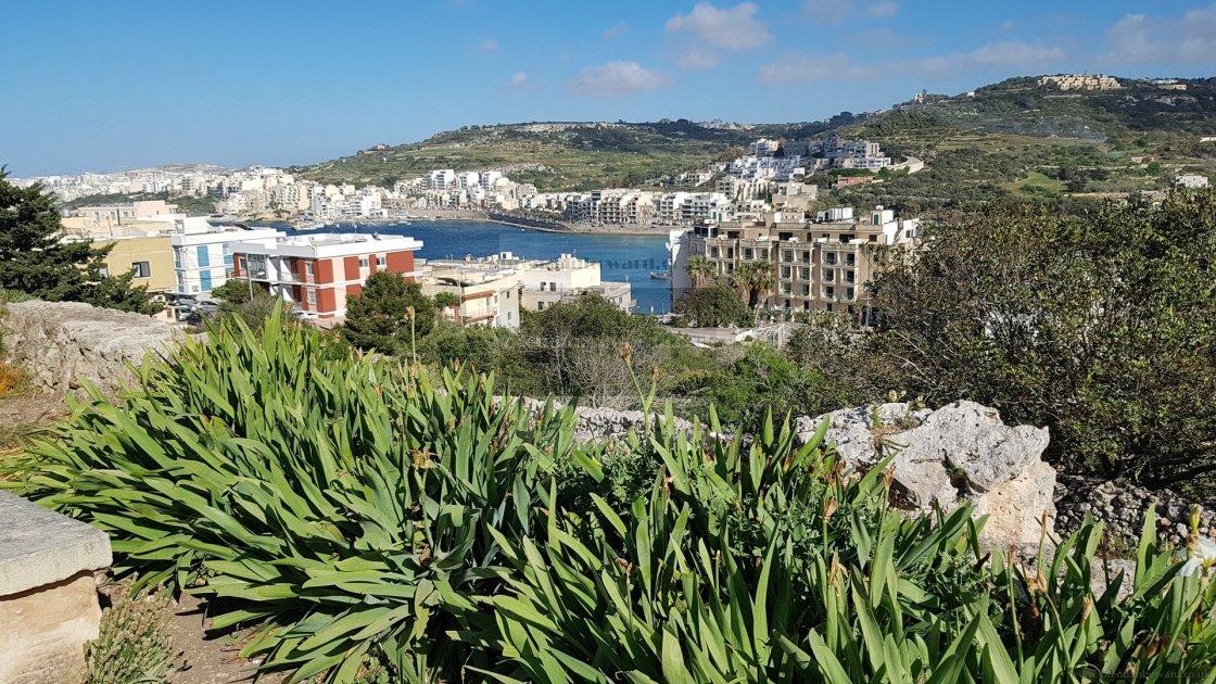 """St Paul's Bay, Malta"" stock image"