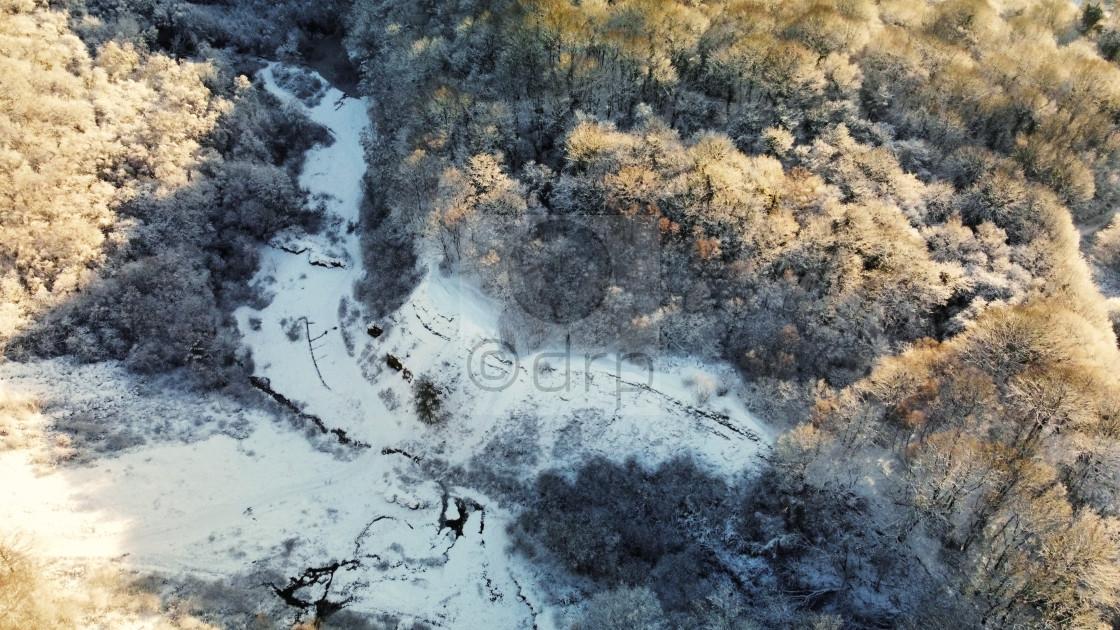"""Saltwells Nature Reserve in Winter"" stock image"