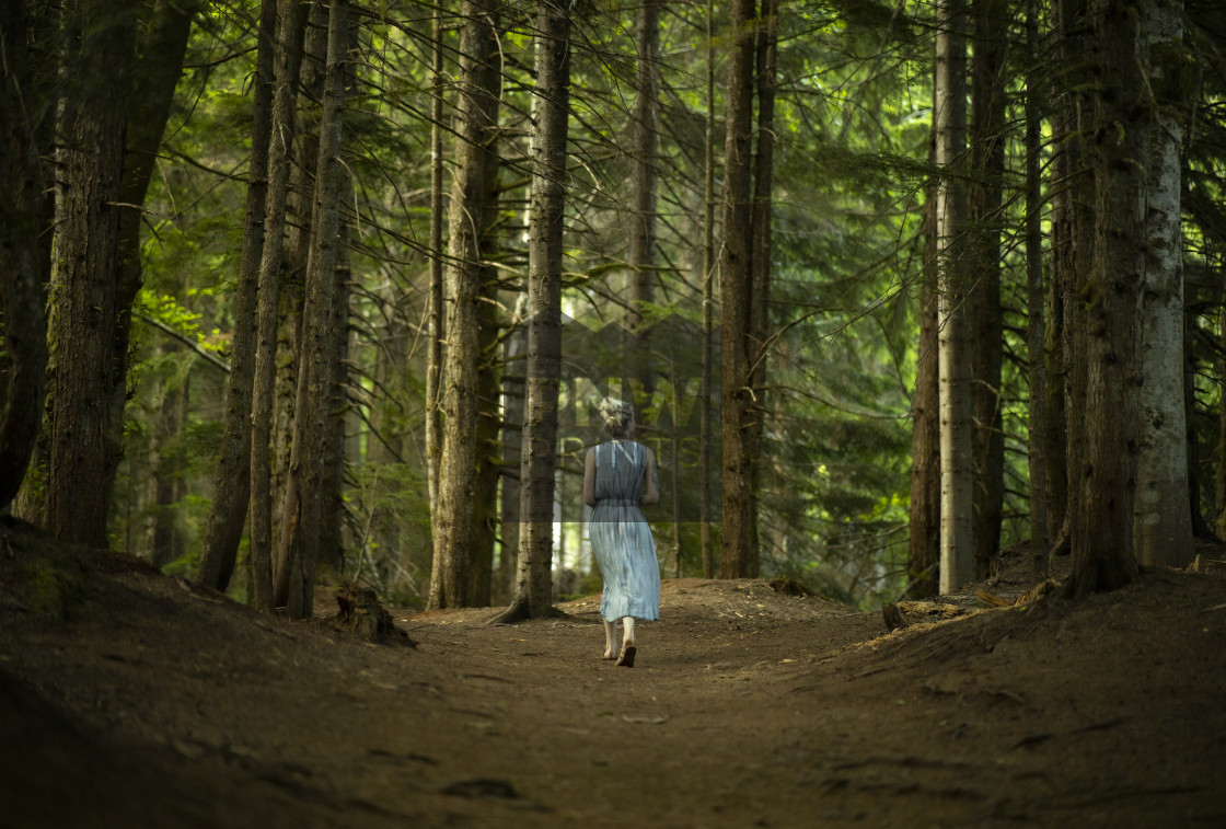 """""""Snoqualmie Pass Forest Girl In Dress"""" stock image"""