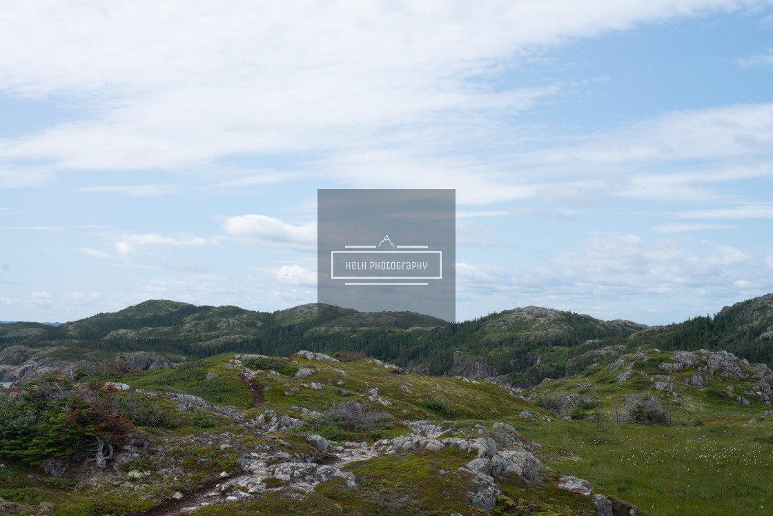 """""""Little Lower Harbour Trail"""" stock image"""