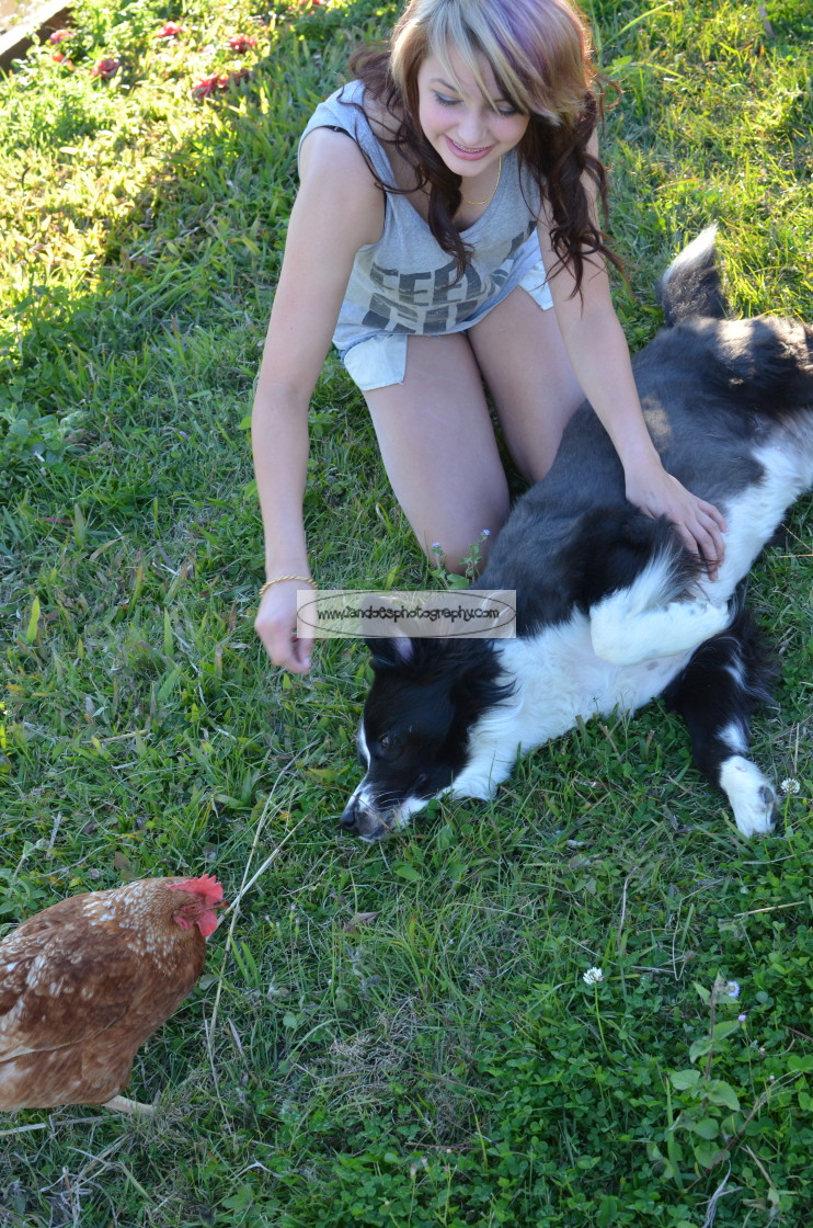 """Girl Dog Chook"" stock image"