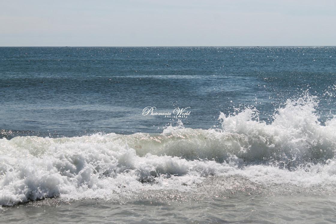 """wild waves"" stock image"