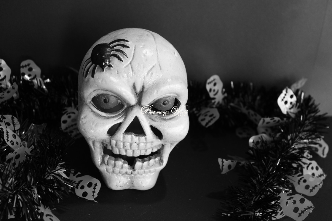 """""""Scary Skull"""" stock image"""