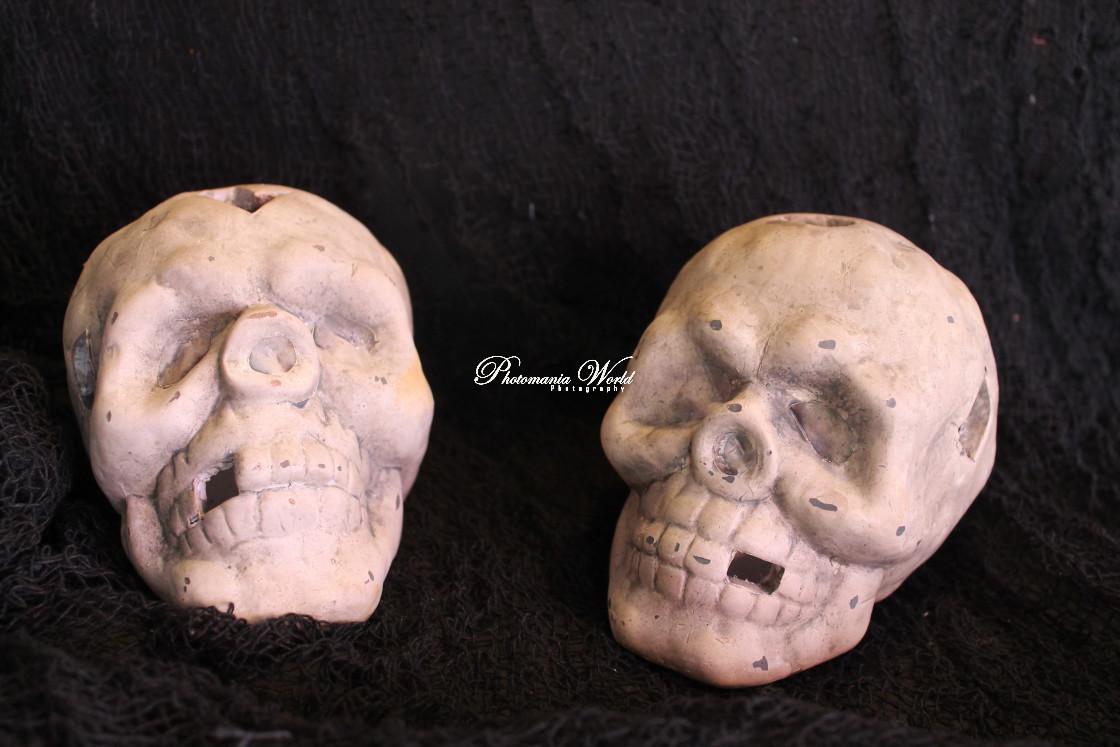 """Twin skulls"" stock image"
