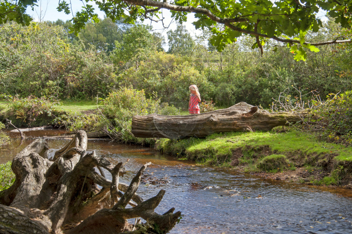 """Young girl next to a New Forest stream"" stock image"