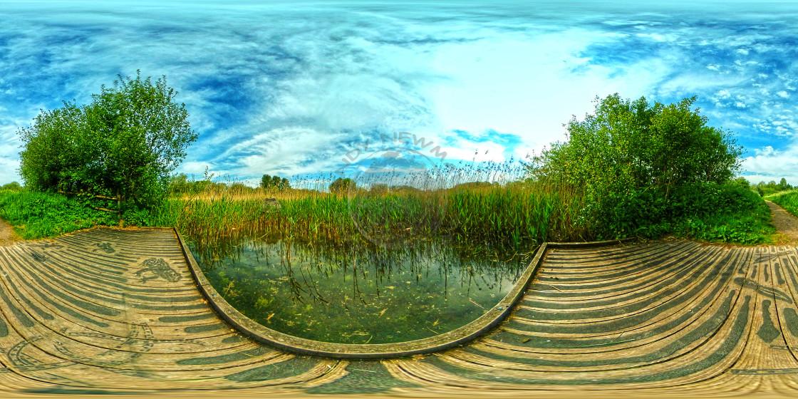"""Pond at Winnal Moors Nature Reserve"" stock image"
